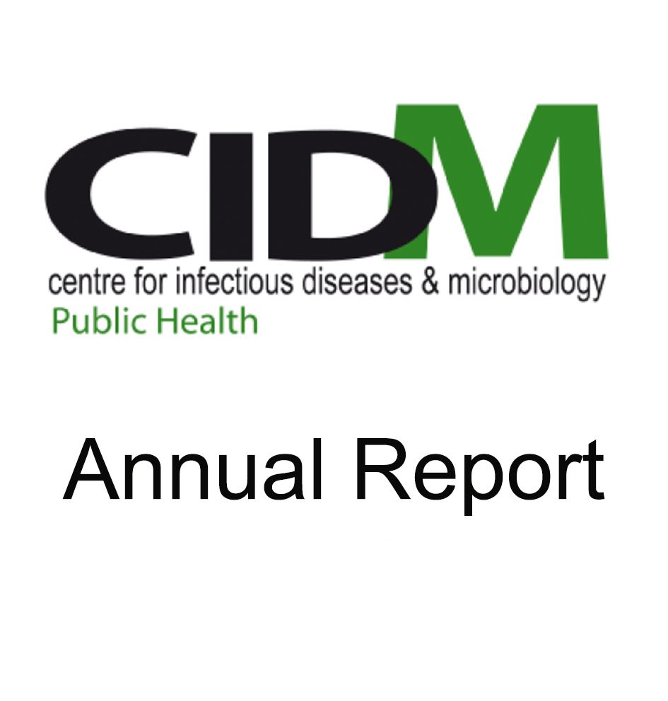CIDM annual report widget2