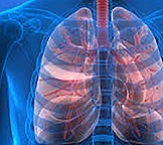 Respiratory research widget small6